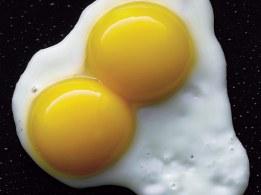 concurso_huevos_fritos_11