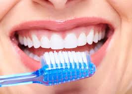dientes 6